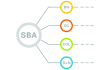 Smart Business Architecture - August 2012 Series
